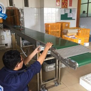 Băng tải PVC tải khay trứng